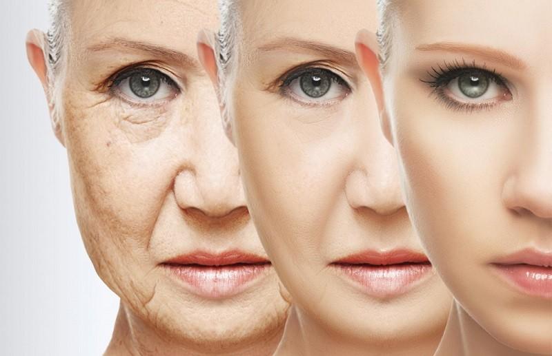 Продукты, замедляющие старение