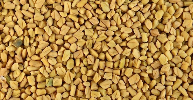 Семена пажитника понижают сахар