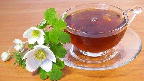 10 лучших чаев для снижения веса