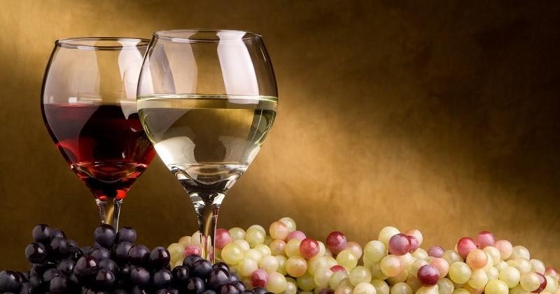 Основные вина, вкусы и виды вин