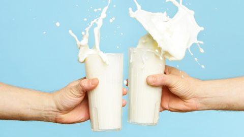 Почему вы не переносите лактозу
