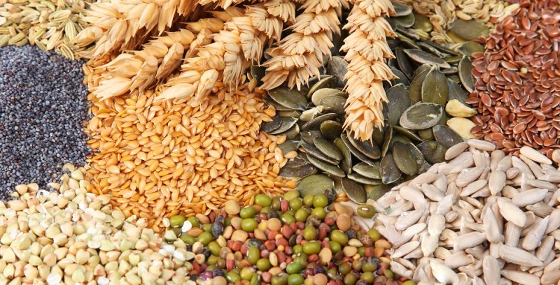 Употребление цельных зерен позитивно влияет на пищеварение