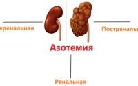 Азотемия – что это такое? Описание, симптомы и терапия