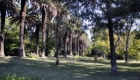 Jardim Botanico Tropical, фото