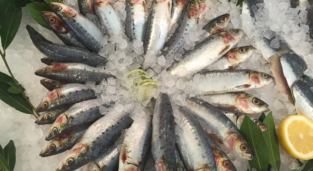 Как выбрать свежую рыбу?
