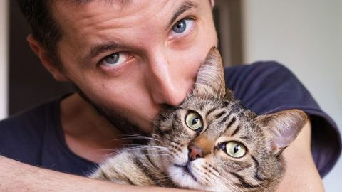 Тест: какое вам завести домашнее животное?