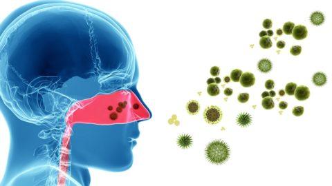 Синдром постназального затекания: симптомы, лечение
