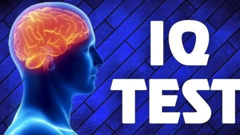 Выше ли среднего ваш IQ