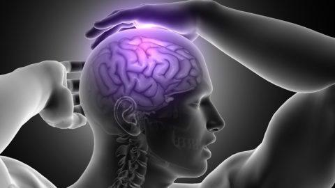 4000 шагов ежедневно улучшают мозговую функцию