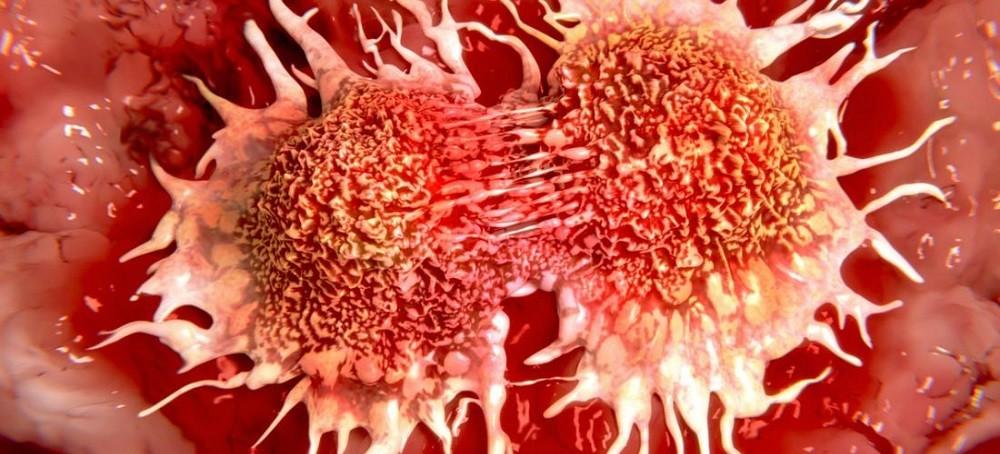 Уровни рака и кислорода - ро2 парциальное давление кислорода в опухоли.