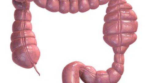 Чистка кишечника в домашних условиях — простое и эффективное средство