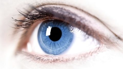 Тест: на сколько идеально ваше зрение?