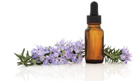 Эфирное масло лаванды — полезные свойства, применение и противопоказания