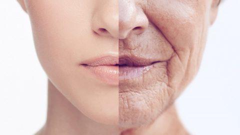Чтобы дольше жить надо меньше есть — говорят исследования