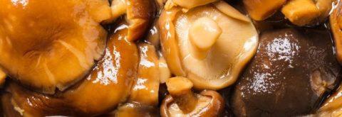 Как солить грибы: простой рецепт