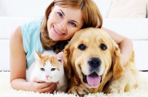 Тест: какое домашнее животное вам подходит?