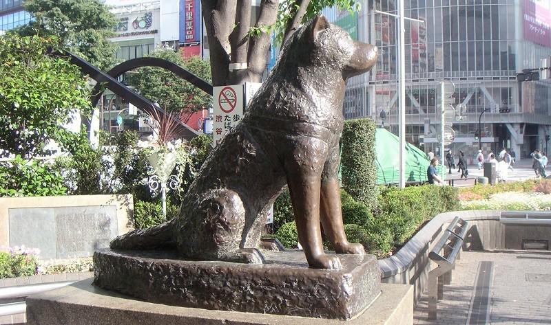 Памятник Хатико (Япония)