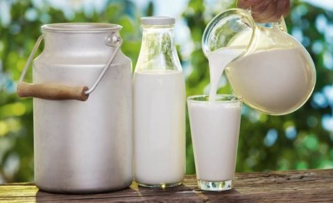 Натуральное непастеризованное молоко очень полезно для здоровья
