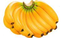 Польза и вред бананов, противопоказания