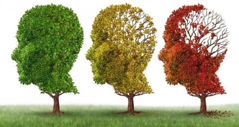 Болезнь Альцгеймера: симптомы и признаки, причины, стадии, лечение