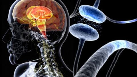 Болезнь Паркинсона: симптомы и признаки, способы лечения, прогноз