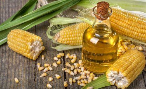 Кукурузное масло: польза и вред, свойства и состав полезных веществ