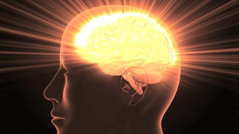 Как улучшить память: упражнения, продукты, препараты, народные средства
