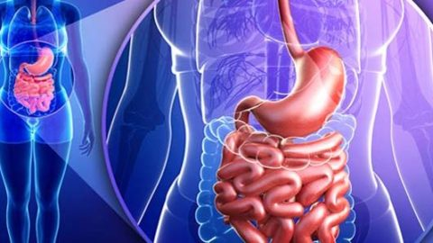 Полипы толстой кишки: как избежать осложнений?