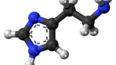Гистамин: что это за вещество, его роль и функции