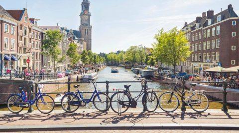 11 интересных фактов о Нидерландах