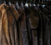 Как правильно выбрать шубу из разных видов меха — советы