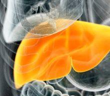 Какие продукты способствуют здоровью печени