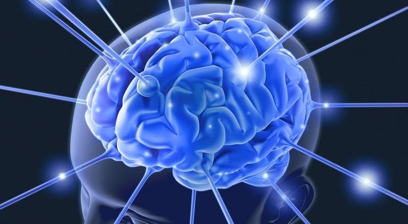 Интересные факты о человеческой памяти