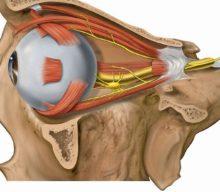 Как восстановить зрение по методу Бейтса без операции в домашних условиях