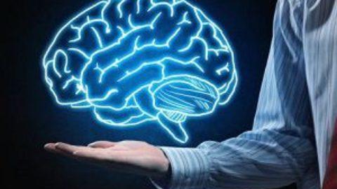Тест: в чем сила вашего ума