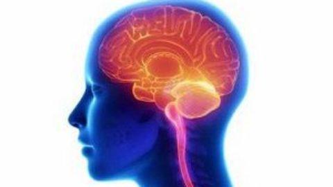Тест: как быстро стареет ваш мозг?