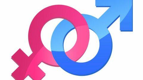 Тест: мужское или женское восприятие?