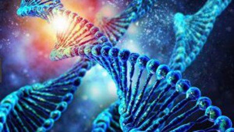 Тест: что вы знаете о генетике?