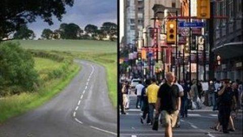 Тест: вы городской или колхозник?