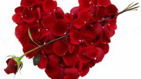 Тест: чем порадовать себя в День святого Валентина