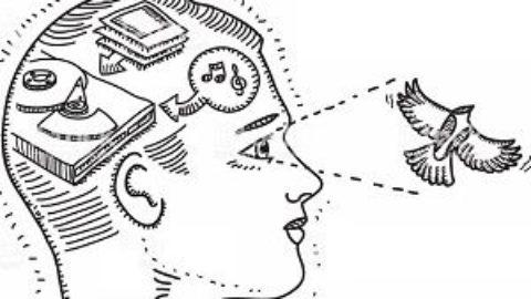Тест: у вас хорошая визуальная память?