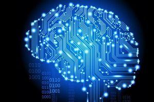 Тест: возраст вашего мозга по сравнению с биологическим возрастом