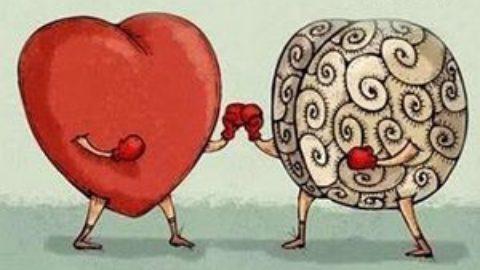 Тест: что в вас преобладает — эмоции или логика?
