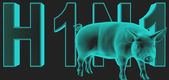 Свиной грипп у взрослых - симптомы и лечение, первые признаки