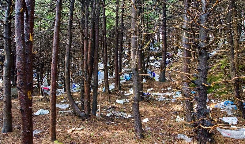 Загрязнение окружающей среды пластиком