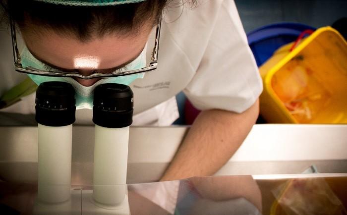 Трансплантация инсулин-продуцирующих клеток поможет лечить диабет 1 типа