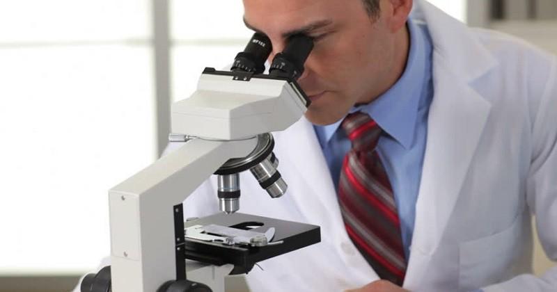 Результаты биопсии простаты