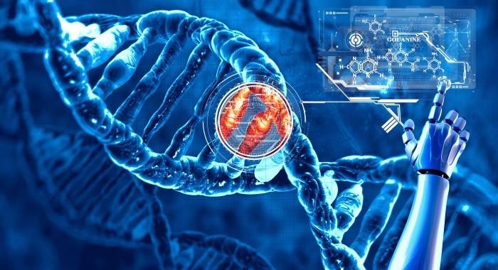 Гены, провоцирующие в сердечные заболевания, также играют важную роль в репродукции человека