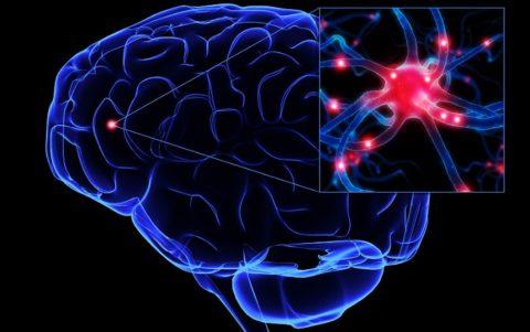 Как мозг реагирует на физические упражнения?