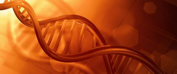 Причины гемофилии - это гены